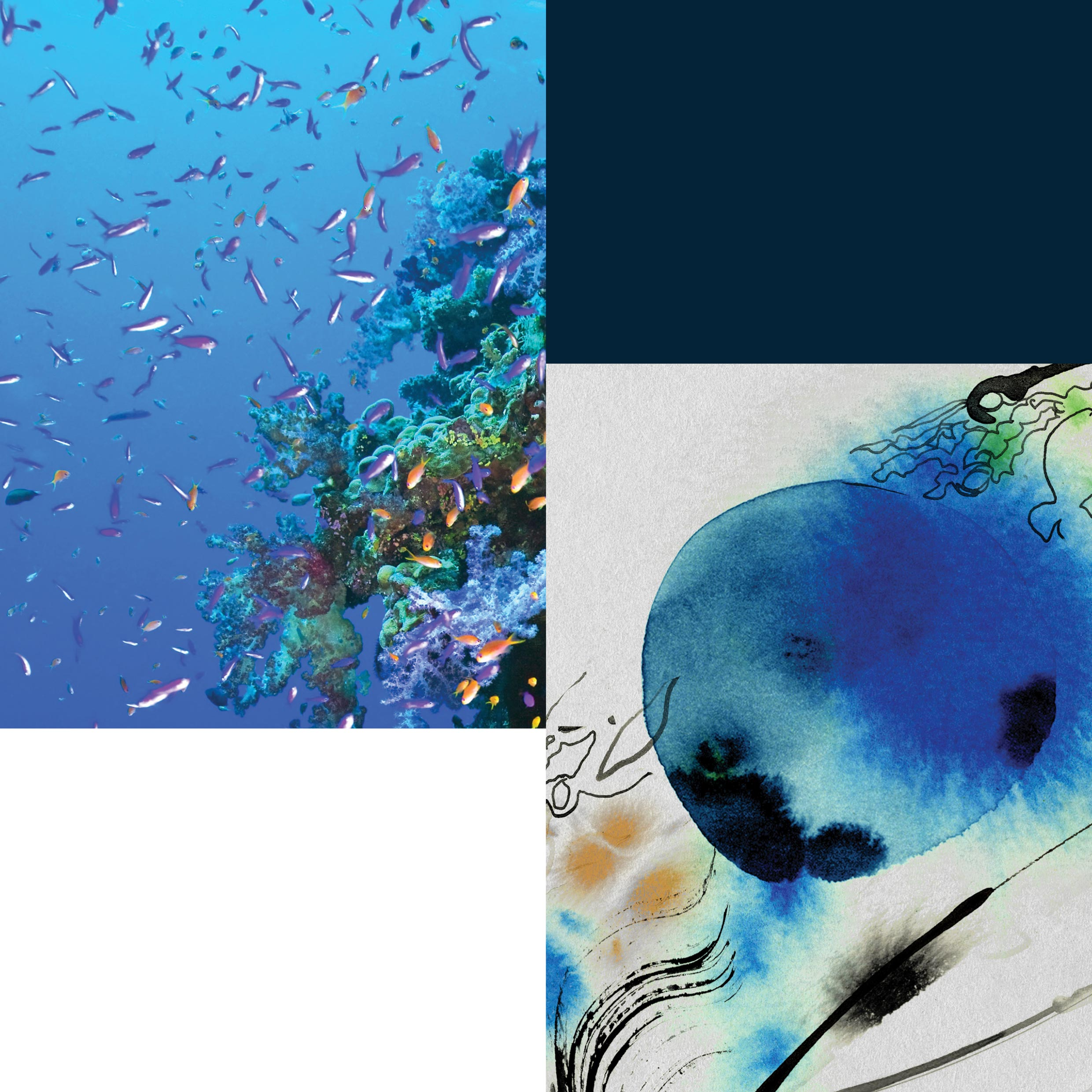 A Deep Dive into Tiffany's Blue Book 2015 – The Art of the Sea